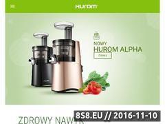 Miniaturka domeny hurompolska.pl
