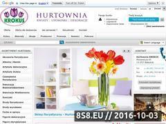 Miniaturka domeny hurtowniakrokus.pl