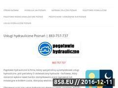 Miniaturka domeny hydraulik-poznan.com