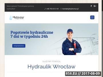 Zrzut strony Hydraulicy Wrocław