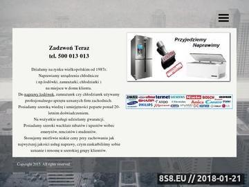 Zrzut strony Naprawa Lodówek i Zamrażarek Poznań i Okolice