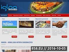 Miniaturka domeny www.iglootechnika.pl