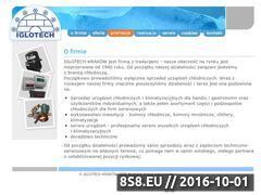 Miniaturka domeny www.iglotech.pl