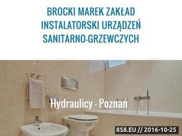 Zrzut strony Instalator-poznan.com.pl