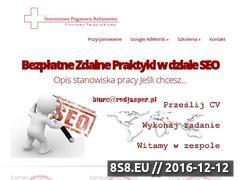 Miniaturka domeny www.internetowe-pogotowie-reklamowe.pl