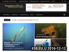 Miniaturka domeny internetowy-biznes.pl