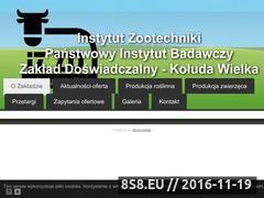 Miniaturka domeny izzd-koluda-wielka.com.pl