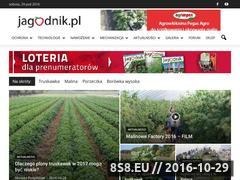 Miniaturka domeny www.jagodnik.pl