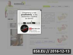 Miniaturka domeny jesiolowski.pl