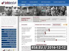 Miniaturka domeny www.jobland.pl
