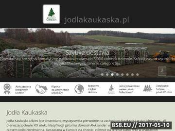 Zrzut strony Jodła kaukaska - uprawa