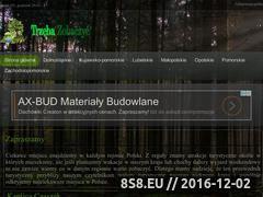 Miniaturka domeny www.jopek.pl
