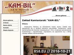 Miniaturka domeny www.kam-bil.pl