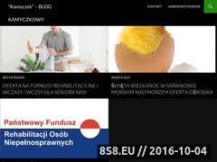 Miniaturka domeny www.kamyczek.pl
