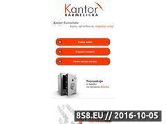 Miniaturka domeny www.karmelickakantor.pl
