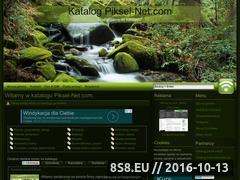 Miniaturka domeny katalog.piksel-net.com