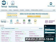 Miniaturka domeny www.katalog.terazinfo.pl