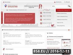 Miniaturka domeny www.katalogfirmy.com.pl