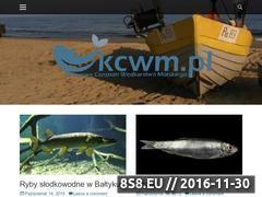 Miniaturka www.kcwm.pl (Wędkarstwo morskie)
