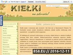 Miniaturka domeny www.kielki.info