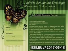 Miniaturka domeny www.klimatyzacja-klimatyzatory.slask.pl