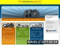 Miniaturka domeny www.kola-pasowe.pl