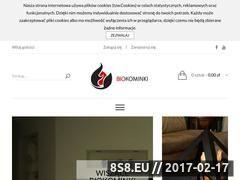 Miniaturka Kominki na biopaliwo (kominkinabiopaliwo.pl)