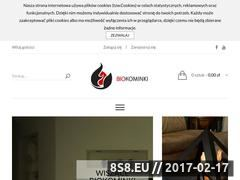Miniaturka domeny kominkinabiopaliwo.pl