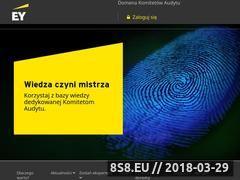 Miniaturka domeny komitetyaudytu.pl