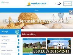 Miniaturka domeny kopalino.com.pl
