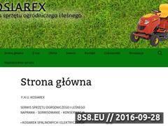 Miniaturka kosiarex.eu (Serwis sprzętu ogrodniczego i leśnego)