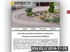 Miniaturka domeny www.kostka-ditrich.pl
