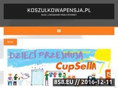 Miniaturka domeny www.koszulkowapensja.pl