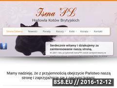 Miniaturka domeny www.koty-brytyjskie-isena.pl