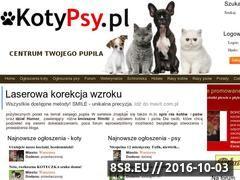 Miniaturka domeny www.kotypsy.pl