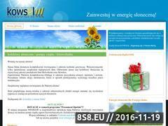 Miniaturka domeny www.kowsol.pl