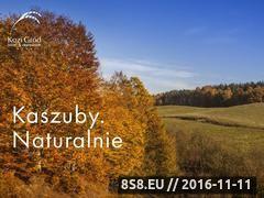 Miniaturka domeny www.kozigrod.pl