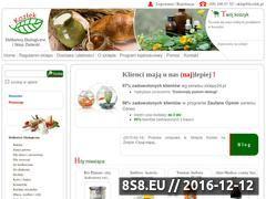 Miniaturka domeny www.kozlek.pl