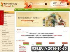 Miniaturka domeny www.kreatywnyswiat.pl