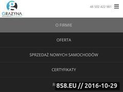 Miniaturka domeny www.ksiegowosc-grazyna.pl