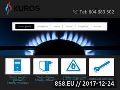 Miniaturka domeny kuros-serwis.pl