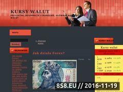 Miniaturka domeny www.kursy-walut.net.pl