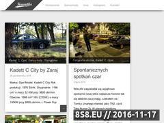Miniaturka domeny www.kuwetka.pl
