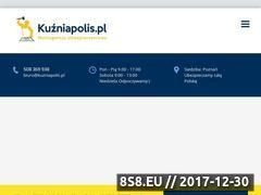 Miniaturka domeny kuzniapolis.pl