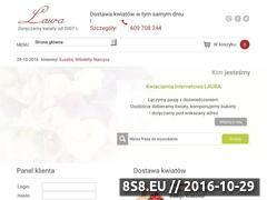 Miniaturka domeny kwiatylaura.pl