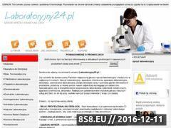 Miniaturka domeny www.laboratoryjny24.pl