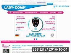 Miniaturka domeny ladycomp.pl