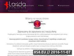 Miniaturka Projektowanie i tworzenie stron internetowych (larida.pl)