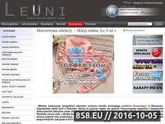 Miniaturka domeny leunihurt.com