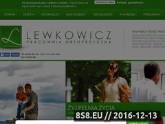 Miniaturka domeny lewkowicz.com.pl